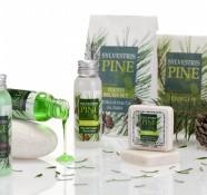 Silvestris Pine